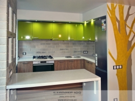 Кухня модерн в цвете Олива глянец и Карпатская ель. Фото